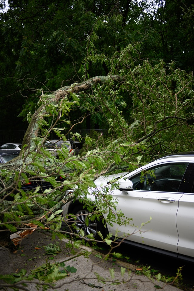 Manfaat Asuransi Mobil Di Era Sekarang
