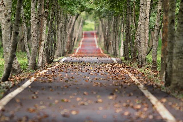 Cara Mengendarai Kendaraan Di Jalan Sempit