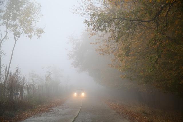 Berikut Penjelasan Mengenai Lampu Kabut Dari Asuransi Mobil Garda Oto